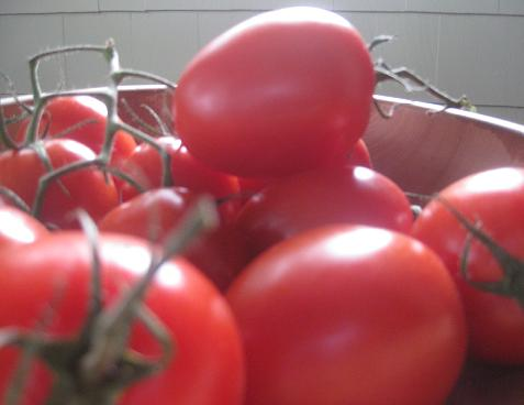 tomatoes oantry diaries 3