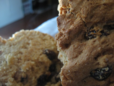 035soda bread with raisins